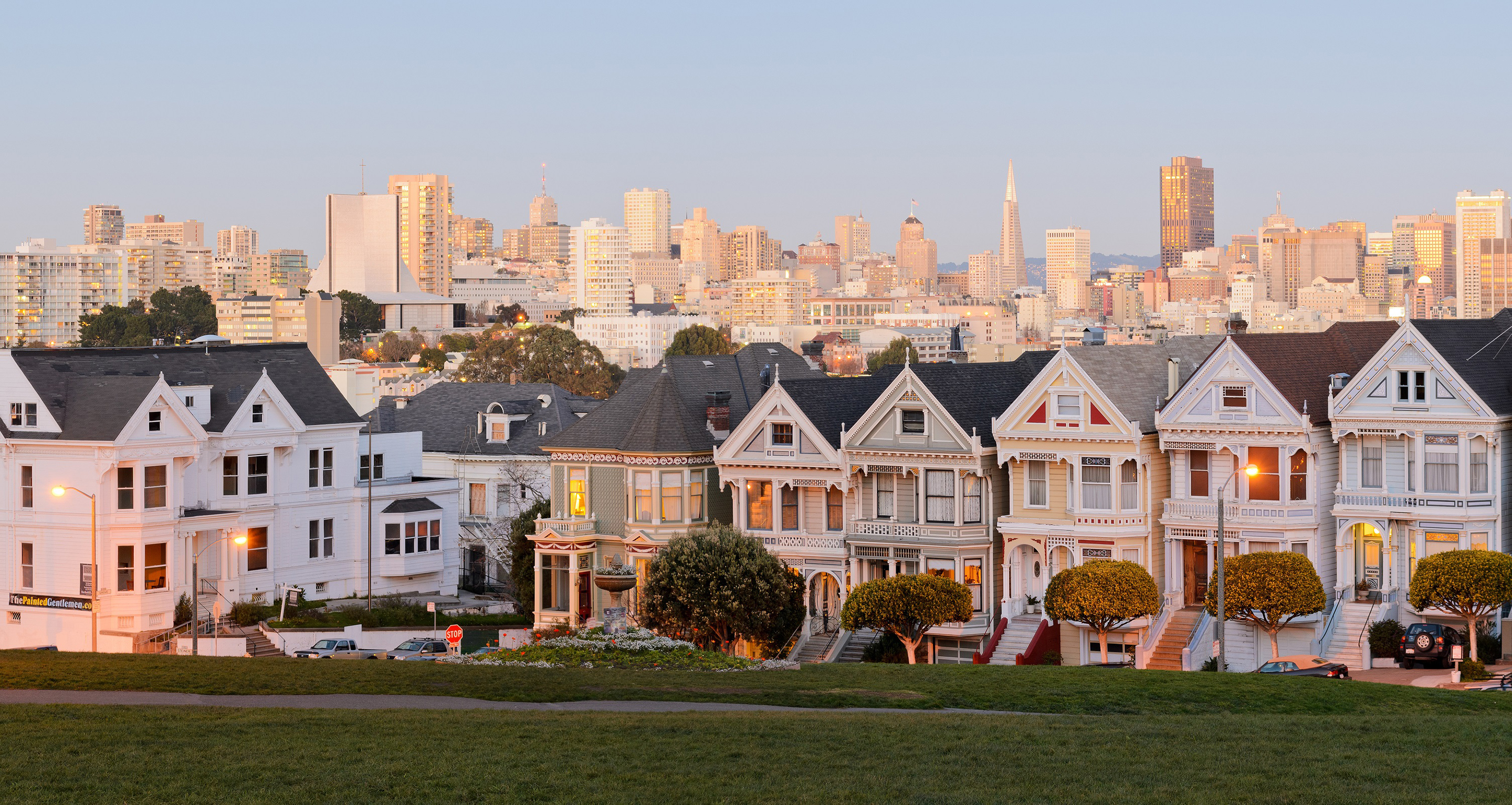 Vomiting anarchists, burrowing owls, and the San Francisco housing crisis